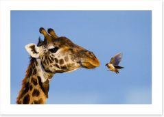 Mammals Art Print 99529143