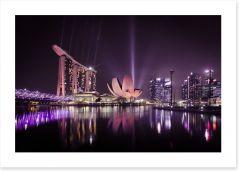 The Singapore flower Art Print CS0011