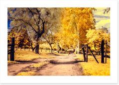 The yellow path