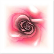 Dusky rose Art Print PA0018