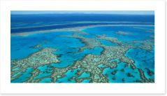 Great Barrier Reef, Queensland (Custom)