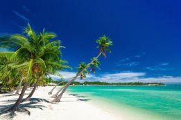 Plantation Island, Fiji