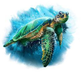 Sea turtle splash