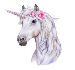 The beautiful unicorn