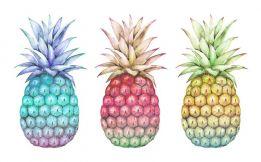 Three pineapples more