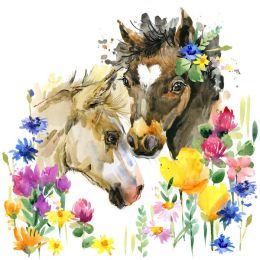 Wildflower foals