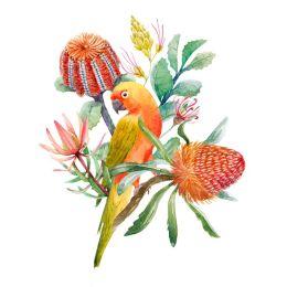 King parrot perch