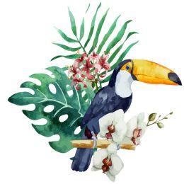 Toucan perch