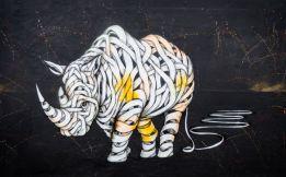 Unravelling rhino