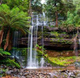 Russell Falls Creek
