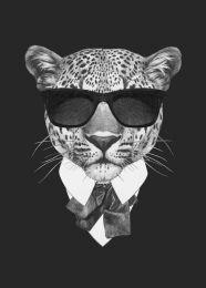 Suave leopard
