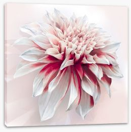 Floral Stretched Canvas 101032828