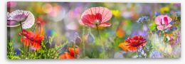 Spring meadow panorama Stretched Canvas 101499146