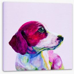 Wistful beagle Stretched Canvas 102986487
