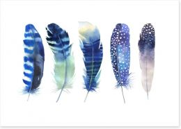 Feather me blue