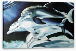 Animals Stretched Canvas 105980616