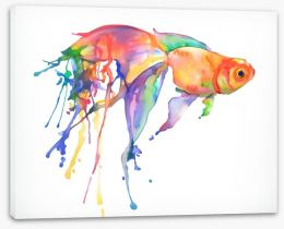 Rainbow goldfish Stretched Canvas 106450910