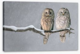 Birds Stretched Canvas 114512559