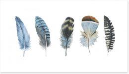 Feather me panorama Art Print 123525570