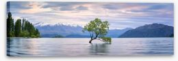 New Zealand Stretched Canvas 127994307