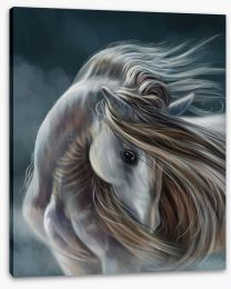 Moonlight mare Stretched Canvas 128374143