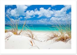 Beaches Art Print 131608700