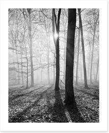 Black and White Art Print 132927774