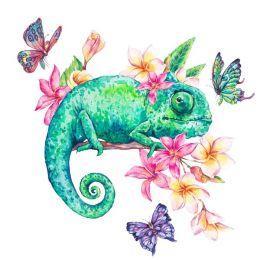 Frangipani chameleon