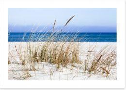 Beaches Art Print 147496945