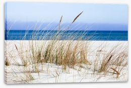 Beaches Stretched Canvas 147496945