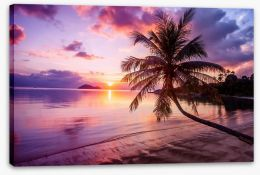 Sunsets / Rises Stretched Canvas 147588348