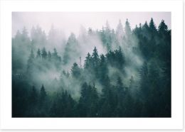 Forests Art Print 167720092