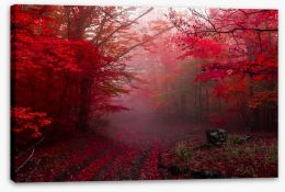Autumn Stretched Canvas 178499149