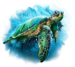 Sea turtle splash