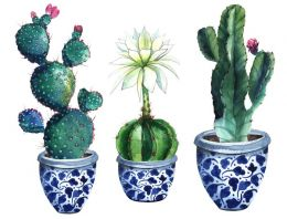 Pots of prickle