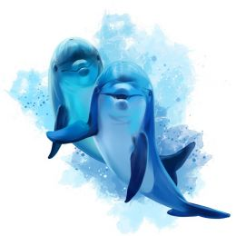 Two blue dolphins
