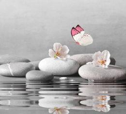 Fluttering harmony