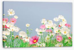 Spring Stretched Canvas 207307377