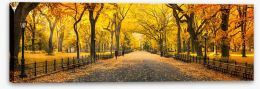 Autumn Stretched Canvas 225310262