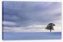 Winter Stretched Canvas 227951133
