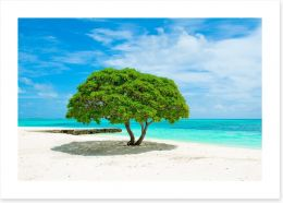 Beaches Art Print 235201488