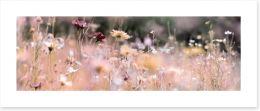 Meadows Art Print 236094960