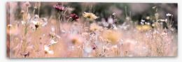 Meadows Stretched Canvas 236094960