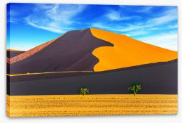 Desert Stretched Canvas 241579180