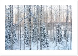 Winter Art Print 245352695