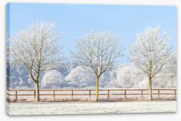 Winter Stretched Canvas 247150245