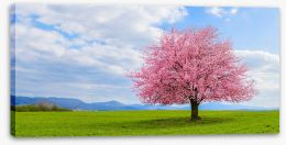 Spring Stretched Canvas 261705159
