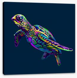 Animals Stretched Canvas 269454889