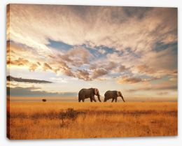 Africa Stretched Canvas 28905607