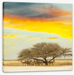 Africa Stretched Canvas 33270069